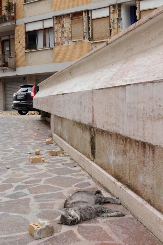 L'Aquila, 07/04/2009